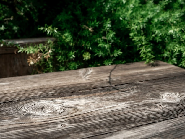 Wood table space with green leaves