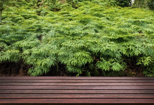 Wood table top on green hemp garden for display hemp product