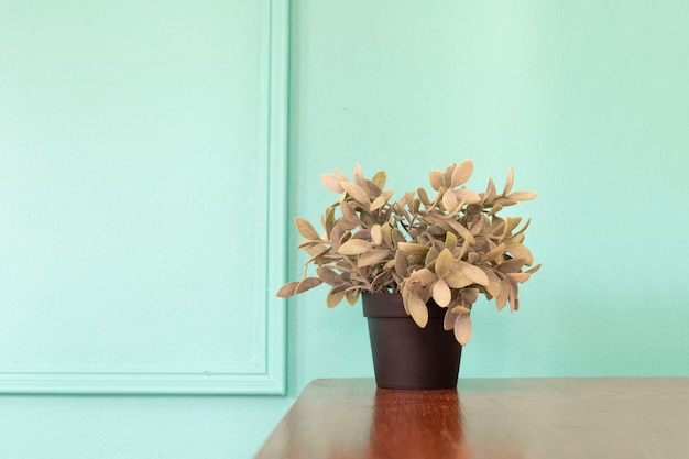 Wood table with plant pot on green wall.