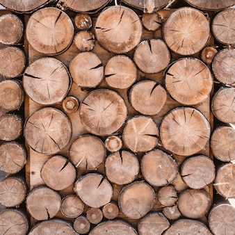 Wood texture background have many log that cut from