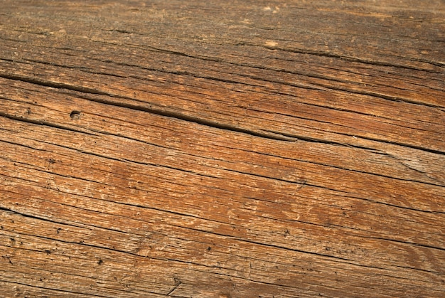 Wood texture background,old log