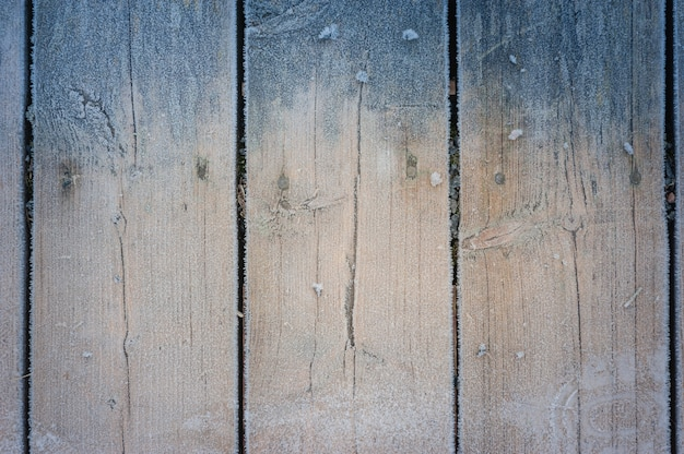 Wood texture background with hoarfrost.