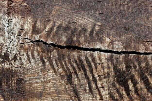 Текстура древесины старый деревянный фон пустой, гранж, природа