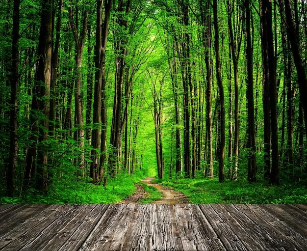 森の部屋のインテリアに木目調の背景