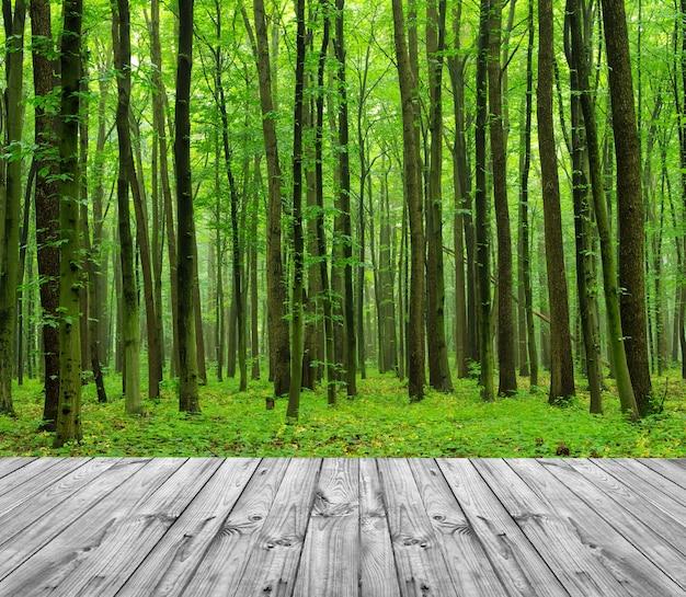 森の中の木目調のスタンド