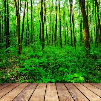 森の表面の部屋の内部の木製の織り目加工の表面