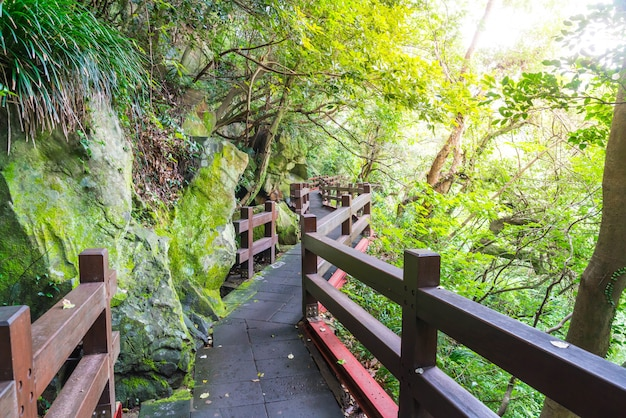 Wood walkway in garden at cheonjeyeon falls , jeju island