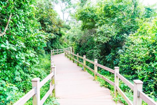Wood walkway at seaseom park in jeju island