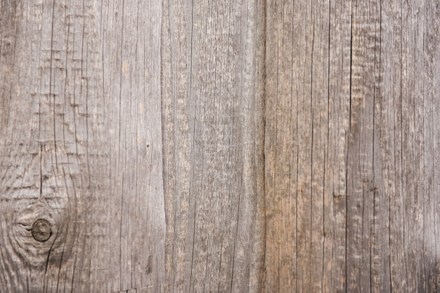Wood wall background or texture. natural wood grey background