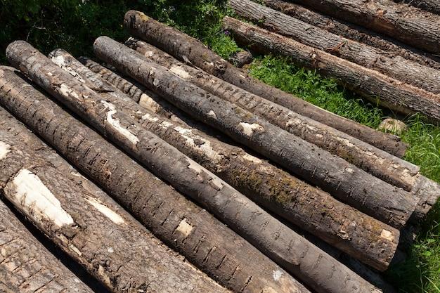 Древесина с корой и повреждениями