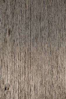 Wood with natural relief and a beautiful shine in surface.