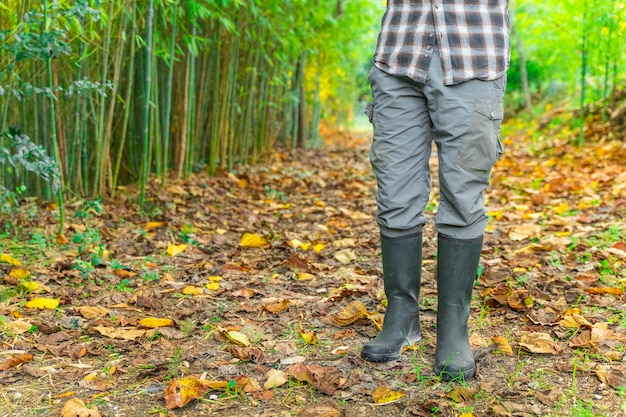 秋の風景の背景にブーツと正方形のシャツと木こり木こり