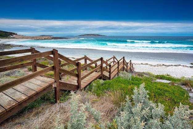 Лесная лестница на лососевом пляже