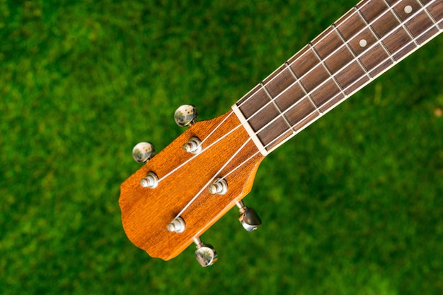 Wooden acoustic guitar on green background