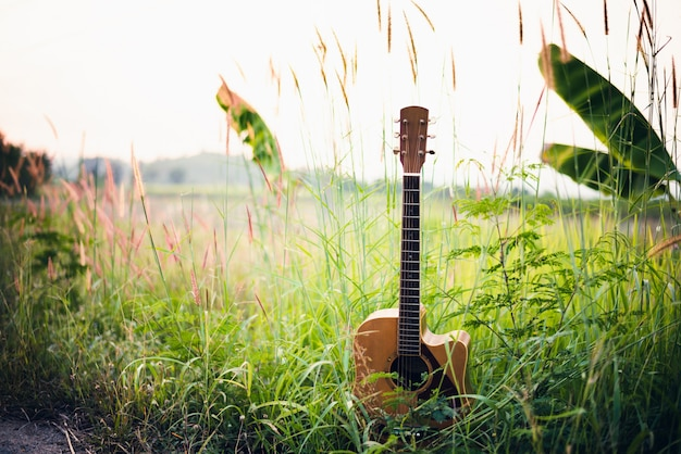 Wooden acoustic guitar lying in green grassy field