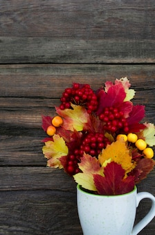 빨간색과 노란색 잎이 있는 가을 밝은 잎과 열매 배경이 있는 나무 세 배경