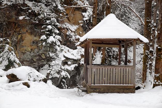 겨울 날 리조트의 숲 근처 나무 아버