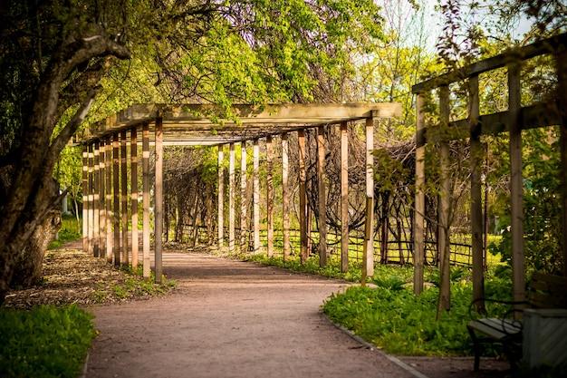 木製のアーチ、路地、興味深い建築物。公園で晴れた日。木造。