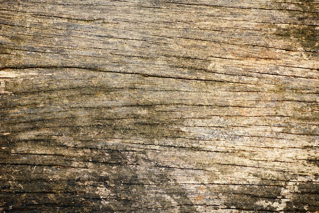 Wooden background texture with old rustic background