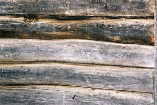 Wooden background   torn