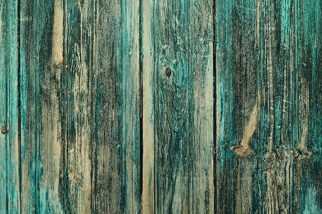 Wooden background wall green color