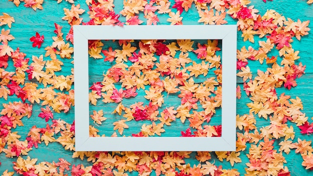 Wooden background with autumn leaves and frame picture