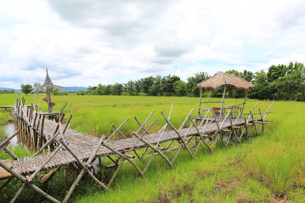 Wooden bamboo walkway bridge crossing paddy field to hut with cloud sky and mountain background.