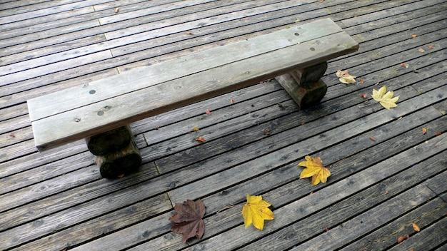 Wooden bench on the deck in the autumnal park with few yellow maple leafs
