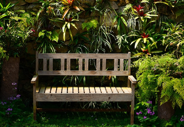 Wooden bench in the garden on a sunny day with tree background