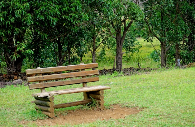 Wooden bench on the green grass field of ahu akivi, easter island of chile