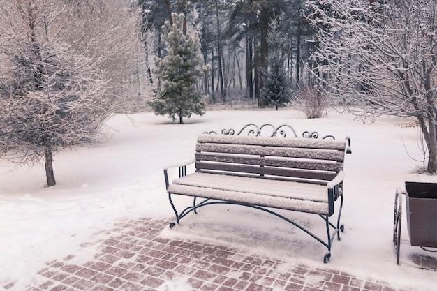 눈 덮인 나무 사이 겨울 공원의 나무 벤치 공용 공간