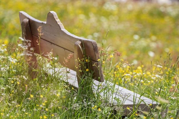 晴れた日の開花草原の真ん中にある木製のベンチ