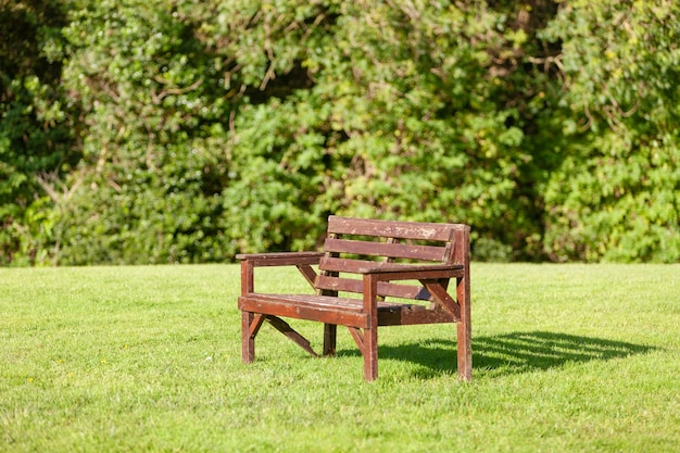 Wooden bench in a nature park in northern ireland. nice day in summer, early autumn.