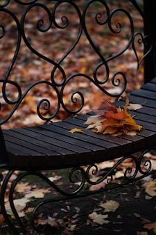 Wooden bench in the park with autumn orange leaves lying on top