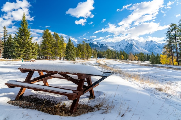 Wooden bench in snowy autumn sunny day colorful yellow and green trees snowcovered mountains