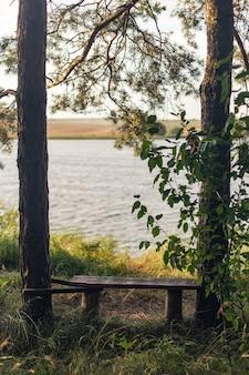 湖のほとりの木々に囲まれた木製のベンチ