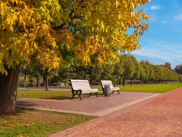 公園の日陰の路地にある秋の木の下にある木製のベンチ。モスクワ