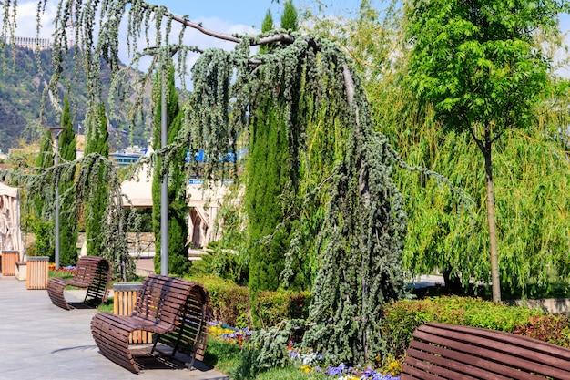 Деревянные скамейки в городском парке