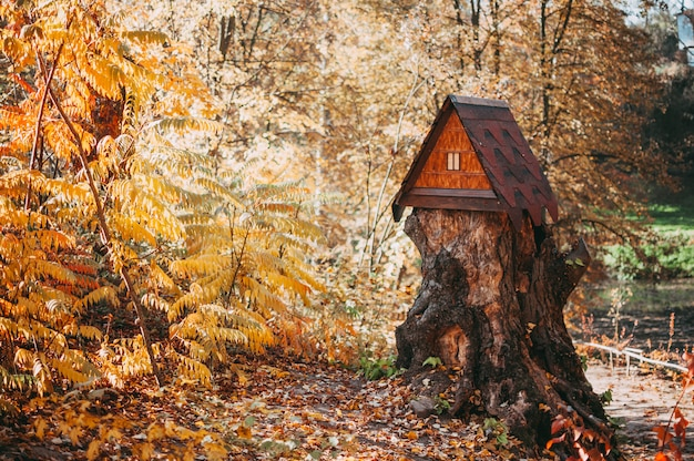 Wooden big house for squirrels with a feeder on a stump in the forest. autumn park with trees and yellow foliage on the ground.