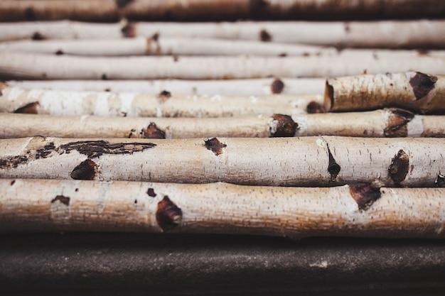 Wooden birch branches