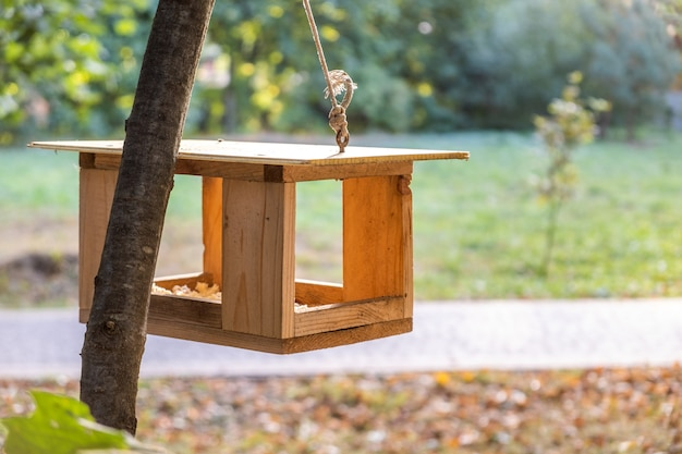秋の公園の木に木製の鳥の餌箱。