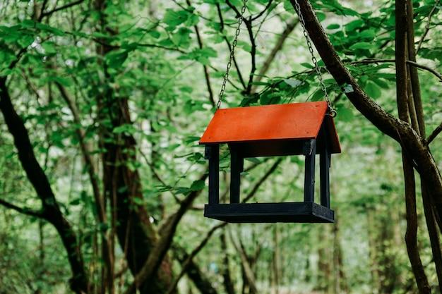 녹색 여름 숲이나 도시 공원에 있는 나무 새 모이통