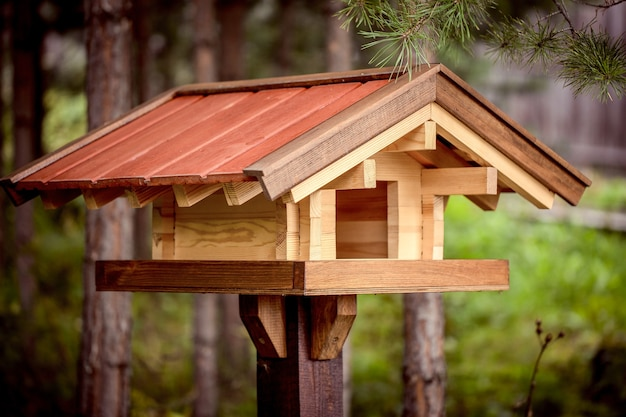 Wooden bird feeder in a pine forest in summer caring for the environment ecology
