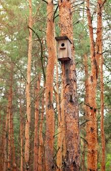 Кормушка из дерева для птиц, висящих на дереве