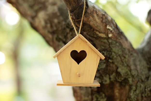 Wooden birdhouse hanging from tree in autumn garden. concept for new home. bird house or bird box in summer sunshine with natural green leaves background.
