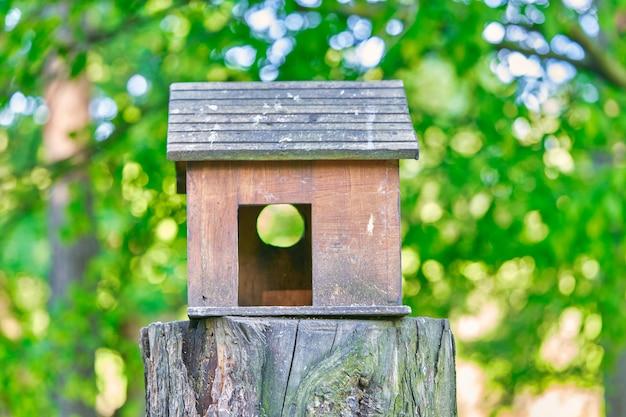 公園の切り株にある家の形をした木造の巣箱