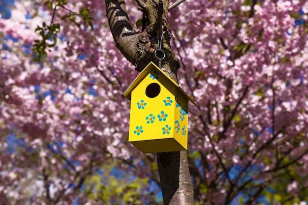 Деревянный скворечник на дереве весной. желтый скворечник на ветке дерева с весенними цветами