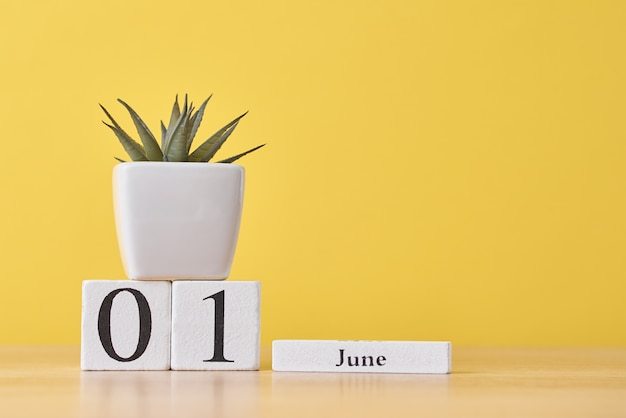 Wooden block calendar with date may 1 and succulent plant in pot on yellow background