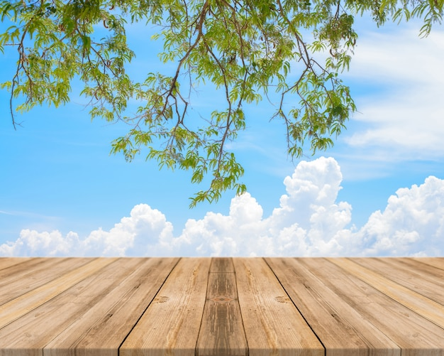 Wooden boards with blue sky and branches