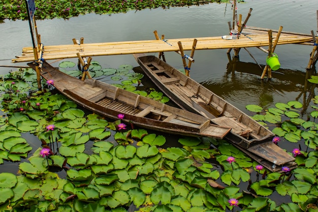 Wooden boat in the pink lotus ponds.